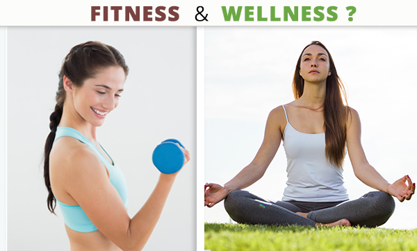 Fit Body, Fit Mind: The Difference Between Fitness and Wellness